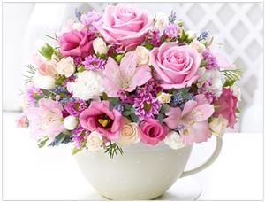 Vaze i posude