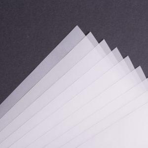 Paus papir